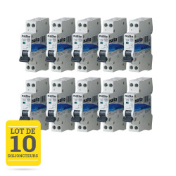 Lot de 10 disjoncteurs 20A 1P+N CE NALTO