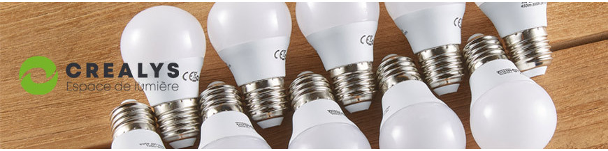 Ampoule LED E27 et E14